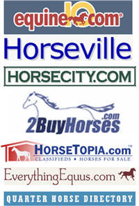 Horse Classified Advertising Sites