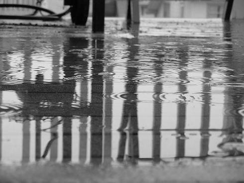 rain on tuesday by Daisy Romwall